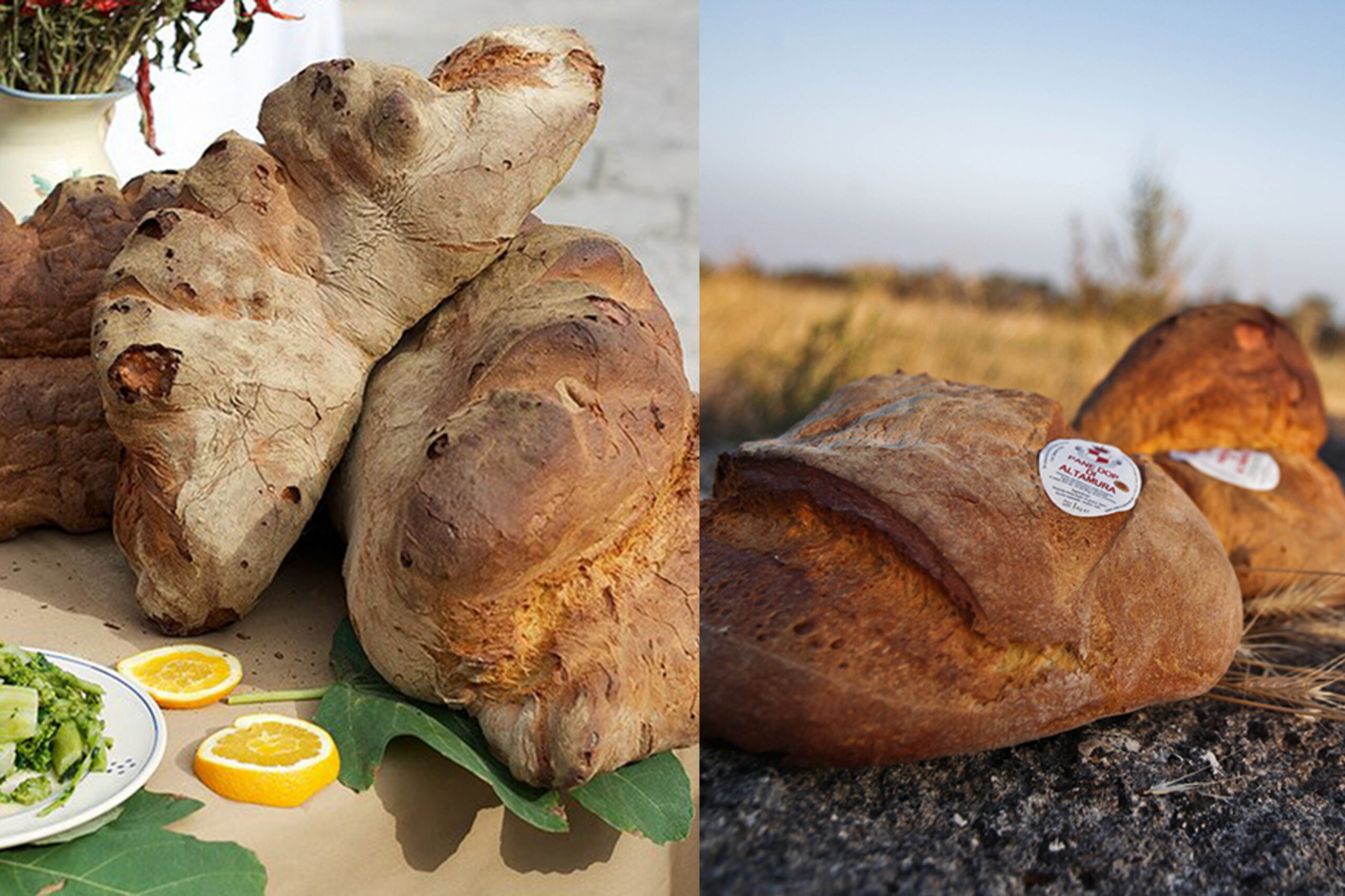 il pane di Matera